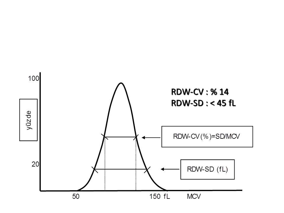 Eritrosit dağılımı, RDW