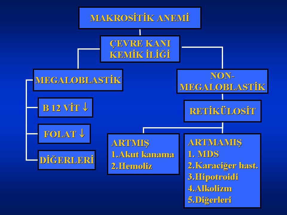 megaloblastik anemi